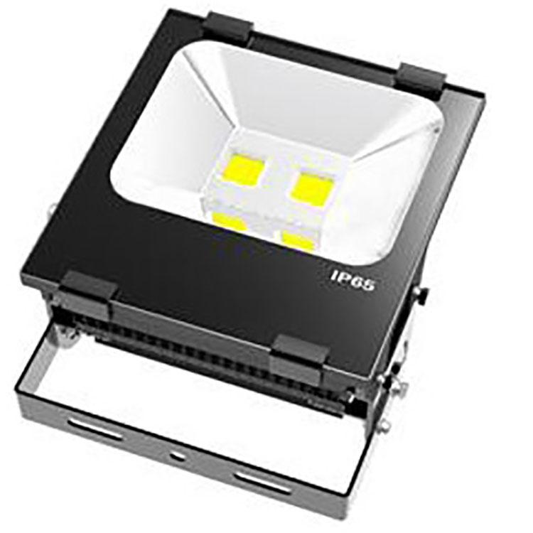 EMERGENCY-LIGHT-DSW-TG001-P100X-A