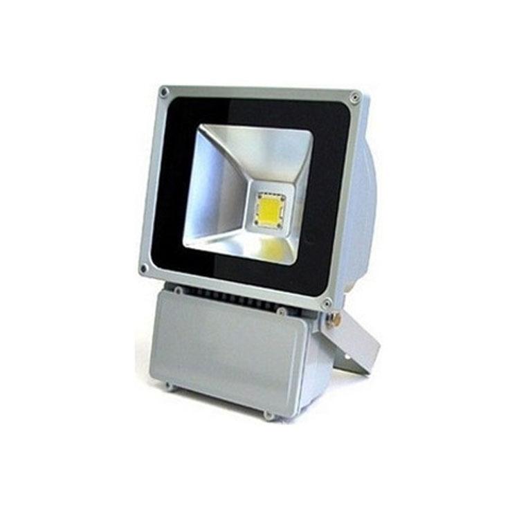 EMERGENCY-LIGHT-DSWTG003-P100X-A
